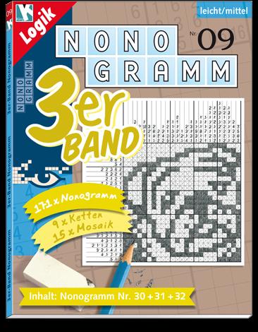3er-Band Nonogramm 09