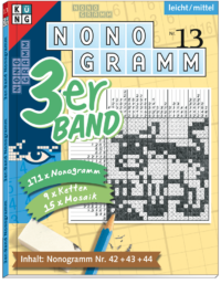 3er-Band Nonogramm 13
