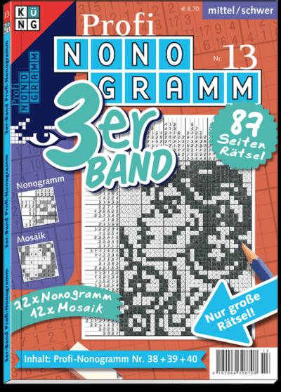 3er-Band Profi Nonogramm 13