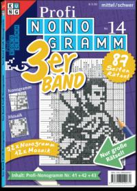 3er-Band Profi Nonogramm 14