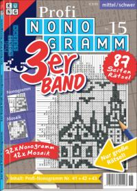 3er-Band Profi Nonogramm 15